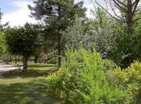 Ferienwohnungen in altem Kloster Garten