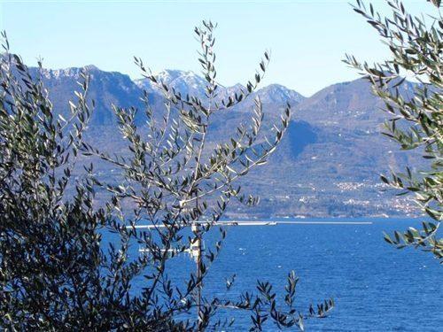 Bild 18 - Ferienwohnung Torri del Benaco - Ref.: 150178-1269 - Objekt 150178-1269