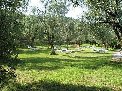 Bild 9 - Ferienwohnung Torri del Benaco - Ref.: 150178-254 - Objekt 150178-254