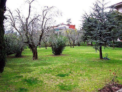 Bild 3 - Ferienwohnung Torri del Benaco - Ref.: 150178-256 - Objekt 150178-256