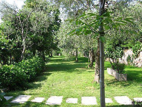 Bild 15 - Ferienwohnung Torri del Benaco - Ref.: 150178-446 - Objekt 150178-446