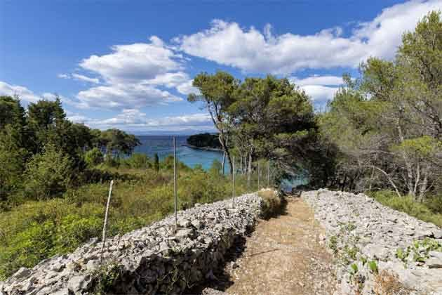 Fußweg zum Strand - Objekt 138495-31
