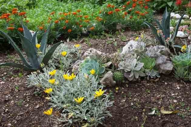 Garten - Ref  2001-62 Bild 4