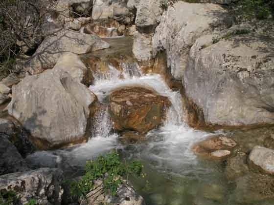 Nationalpark Paklenica- Bild 3 - Objekt 100269-1