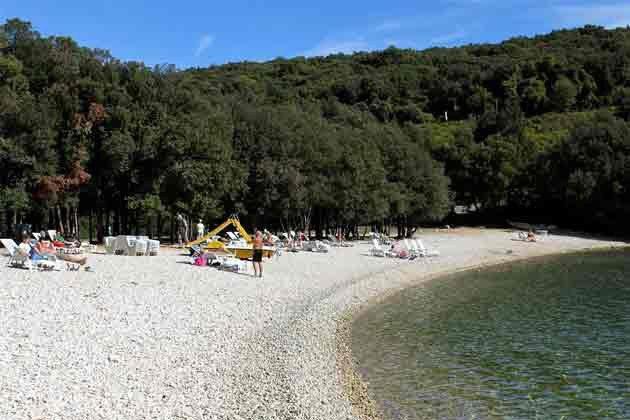 Strand von Duga Uvala - Bild 1 - Objekt 150284-119