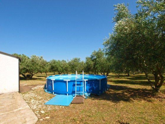 das Schwimmbecken - Bild 2 - Objekt 160284-365