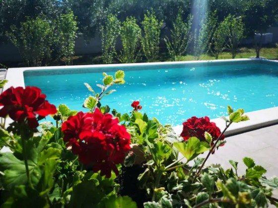 das Pool - Bild 2 - Objekt 225602-6