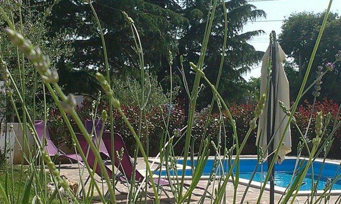 Pool und Poolterrasse - Bild 1 - Objekt 160284-278