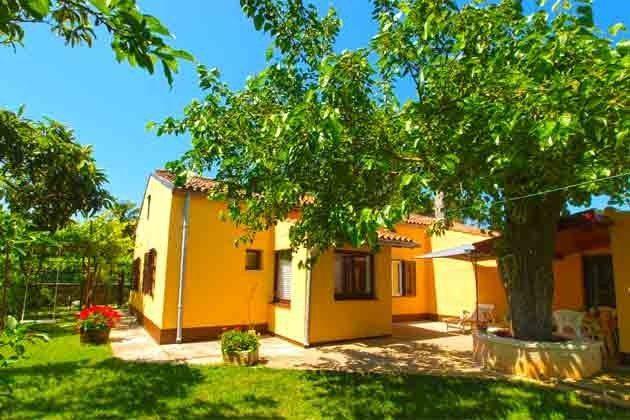 Schatten spendender Baum vor dem Haus - Objekt 160284-259