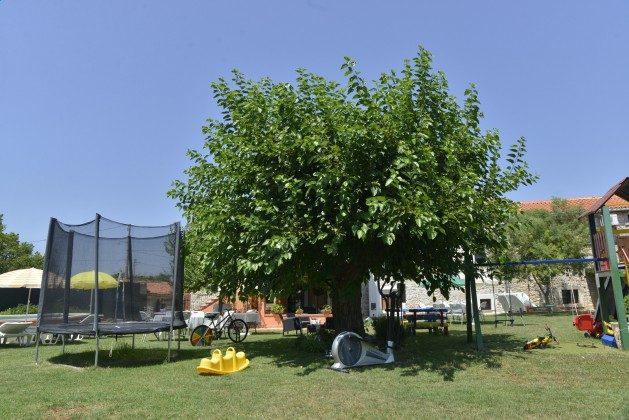 Spielgeräte im Garten - Bild 1 - Objekt 160284-80