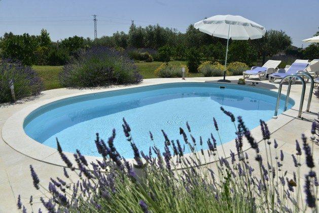 der Pool - Bild 1 - Objekt 160284-80