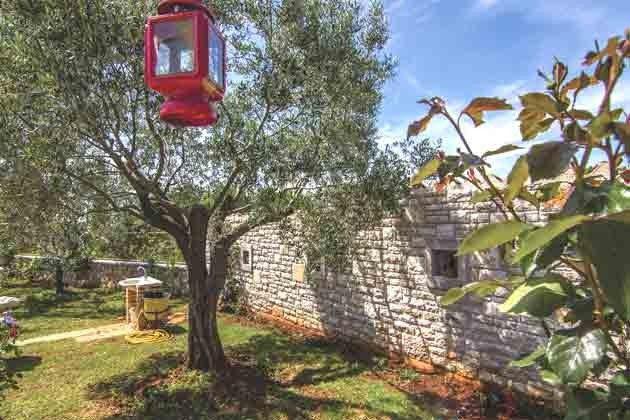 Teil des Gartens - Bild 3- Objekt 160284-85