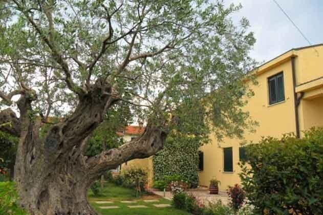 Garten hinter dem Haus - Objekt 160284-28