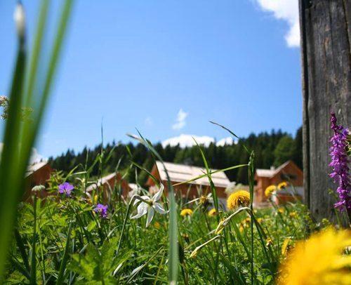 Bild 5 - Ferienwohnung Altaussee - Ref.: 150178-555 - Objekt 150178-555