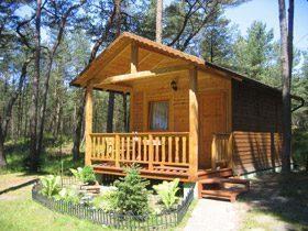 Holzhäuser Muszelka und Meduza