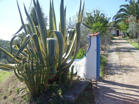 Ferienwohnung Alentejo mit Badeurlaub-Möglichkeit