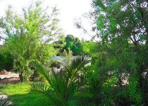 Algarve Ferienhaus bei Lagos