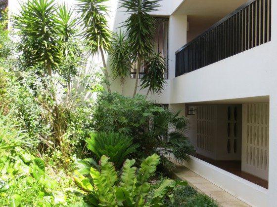 Garten vor dem Haus Lagos Edificio Montana T2 2397-2