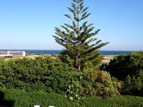 Bild 9 - Algarve Ferienwohnung Quinta da Caldeira C.1. - Objekt 80332-2