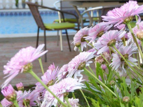 Algarve Albufeira Ferienhaus Ref. 124113-12 Bild 25