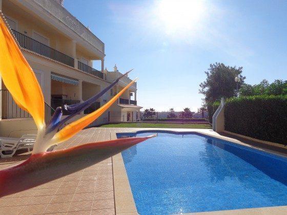 Pool Salgados Ferienwohnung T2 Ref: 124113-60