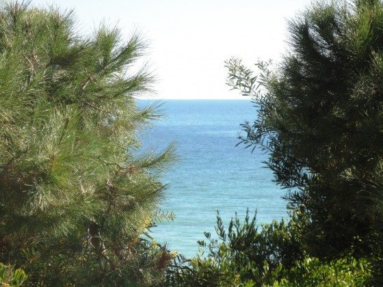 Algarve Albufeira Ferienwohnung Ref. 124113-8 Bild 6