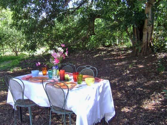 Garten Ferienhaus Casa do Forno Portugal Ref.:150099-2