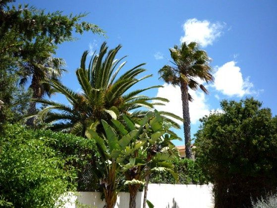 Villa Boa Jardim Garten