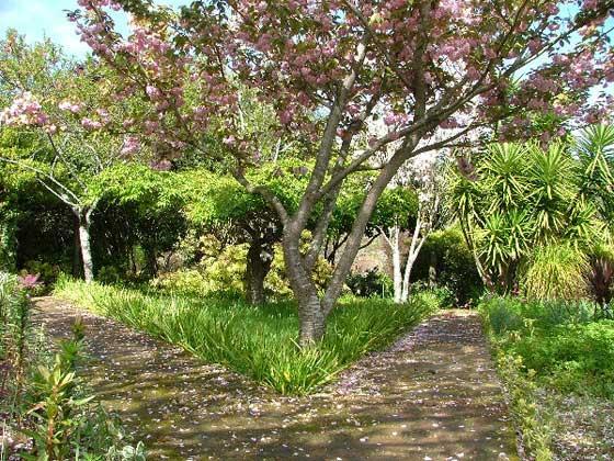 Bild 25 - Portugal Costa Verde Quinta Ferienhaus Ref. 37412 - Objekt 37412-1