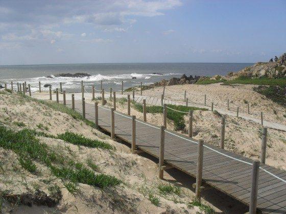 Wanderstege entlang am Strand