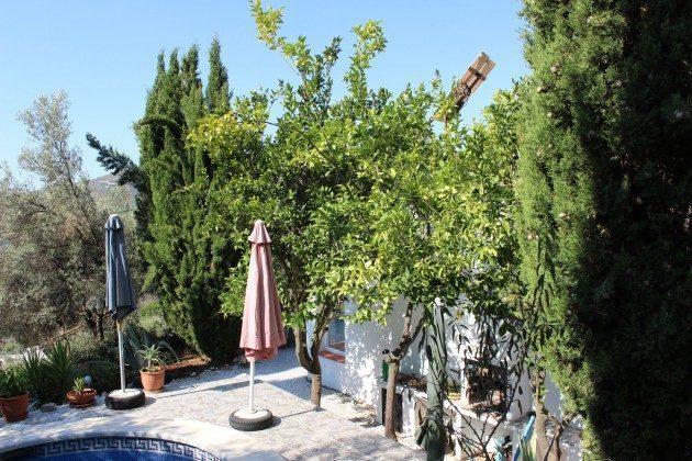 Andalusien Ferienhaus Competa Ref. 186793-1 Terrasse