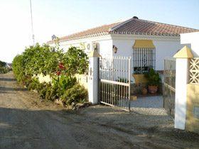 Bild 10 - Costa del Sol Torrox El Morche Finca Liwa - Objekt 105413-2