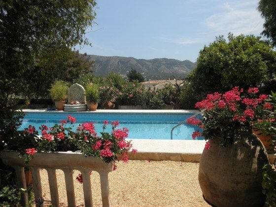 Blick auf den Pool vom Garten