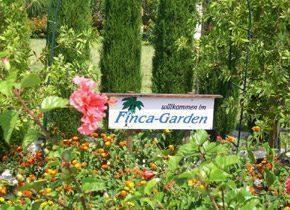 Bild 11 - Spanien Costa Blanca Ferienhaus Finca-Garden - Objekt 2492-1
