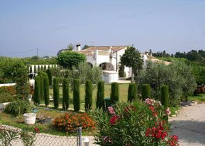 Bild 2 - Spanien Costa Blanca Ferienhaus Finca-Garden - Objekt 2492-1
