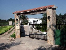 Bild 9 - Spanien Costa Blanca Ferienhaus Finca-Garden - Objekt 2492-1
