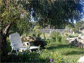 Ferienhaus Casa Meca Studio Garten