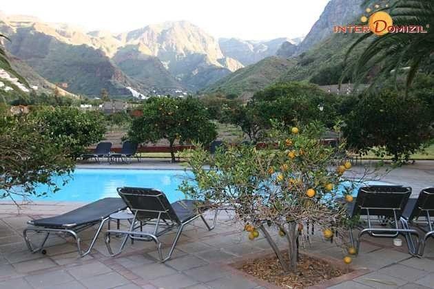 Obstbäume rund um den Poolbereich