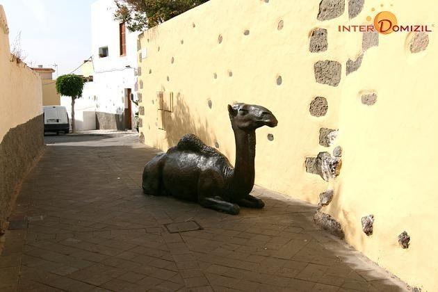 ein Kamel aus Bronze in einer kleinen Gasse