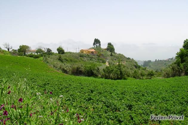 Finca und Umgebung