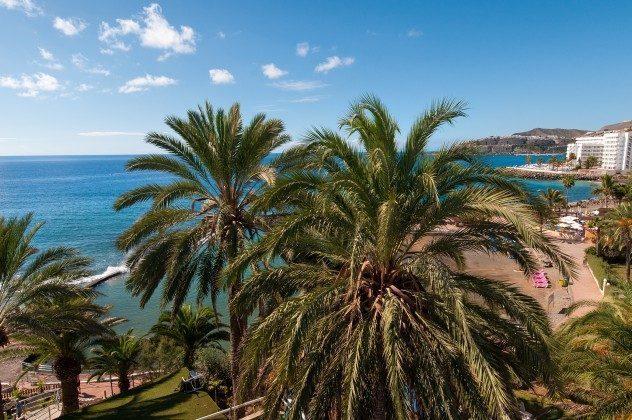 GC 164835-22 schöner Ausblick auf Palmen und Meer