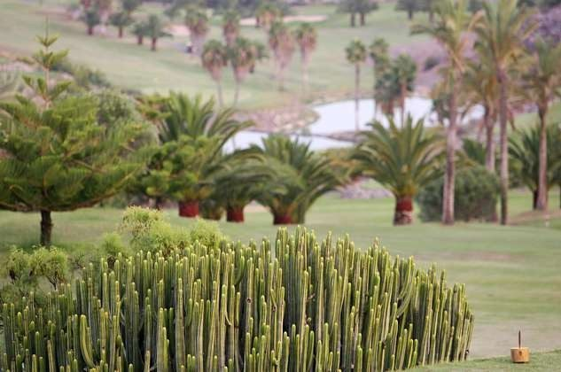 Salobre Golf Resort
