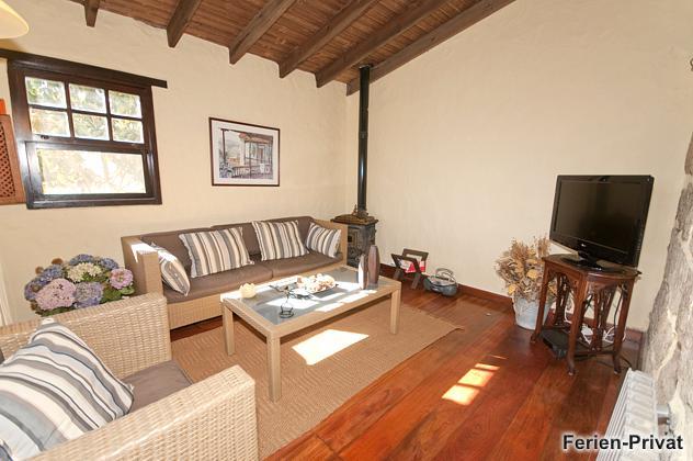 Wohnzimmer mit Holzofen und TV