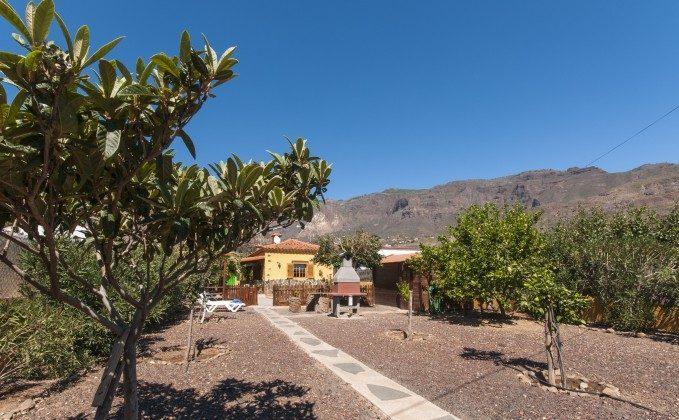 Blick auf den Garten, Grillbereich und das Haus