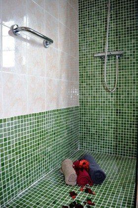 LZ 110068-78 Wohnbeispiel Dusche