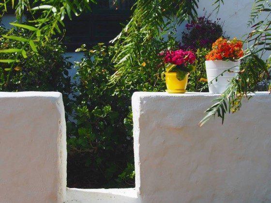 Detailaufnahme Garten