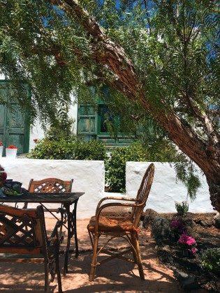 schattiger Sitzplatz unter Bäumen im Garten
