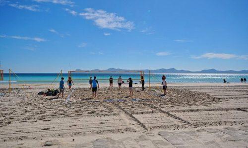 Bild 14 - Ferienwohnung Playa de Alcudia - Ref.: 150178-1183 - Objekt 150178-1183