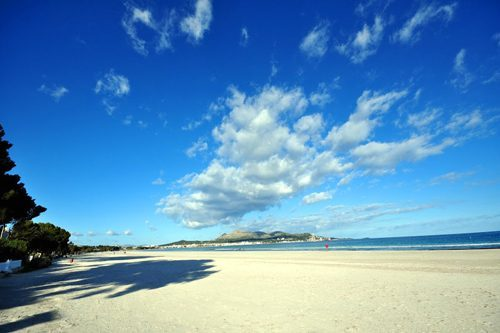 Bild 12 - Ferienwohnung Playa de Alcudia - Ref.: 150178-295 - Objekt 150178-295