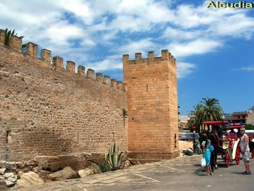Bild 15 - Ferienwohnung Playa de Alcudia - Ref.: 150178-295 - Objekt 150178-295